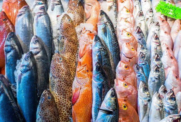 Fish Market BabMag